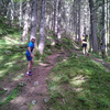 "Stage trail : ""Week-end Choc"" preparation Trail > 70 km"